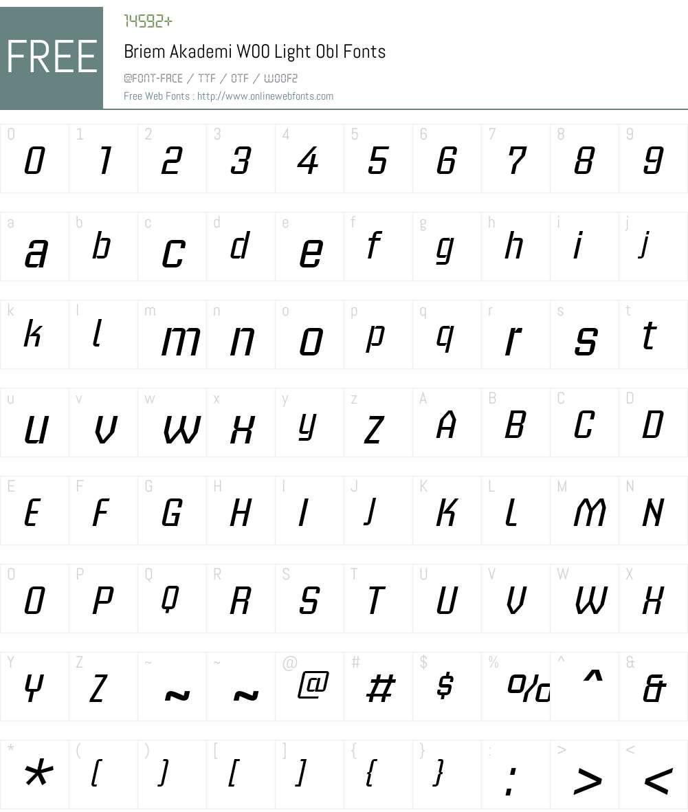 BriemAkademiW00-LightObl Font Screenshots