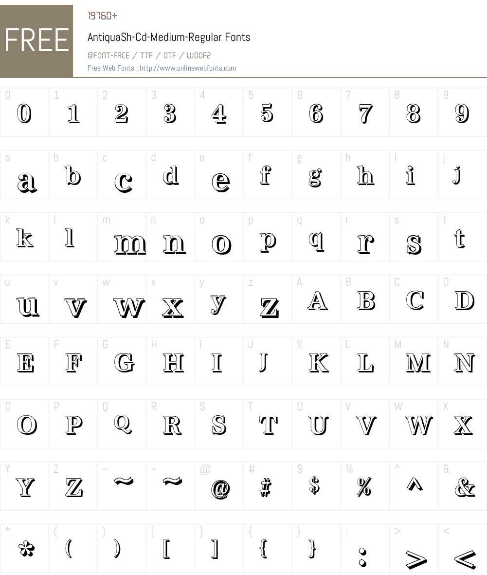 AntiquaSh-Cd-Medium Font Screenshots