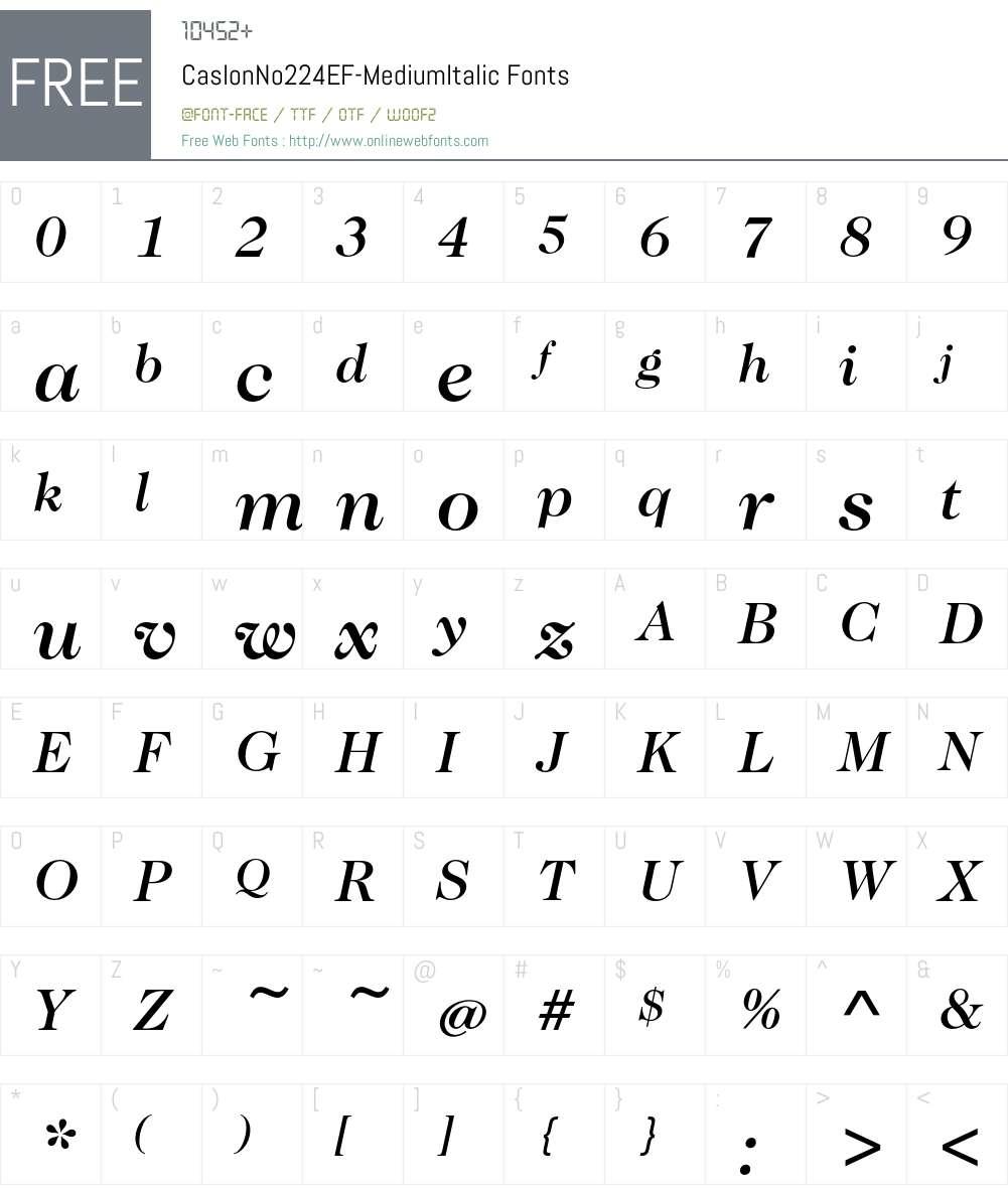 CaslonNo224EF-MediumItalic Font Screenshots