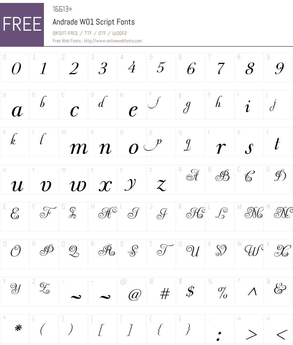 AndradeW01-Script Font Screenshots