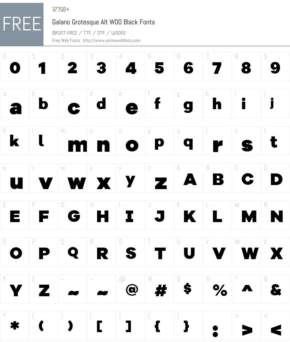 GalanoGrotesqueAltW00-Black Font Screenshots