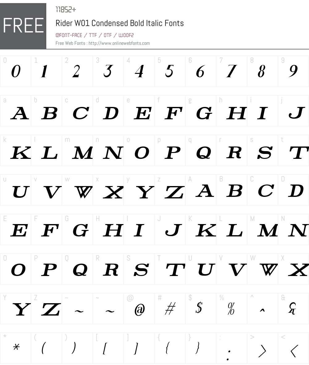 RiderW01-CdBoldItalic Font Screenshots