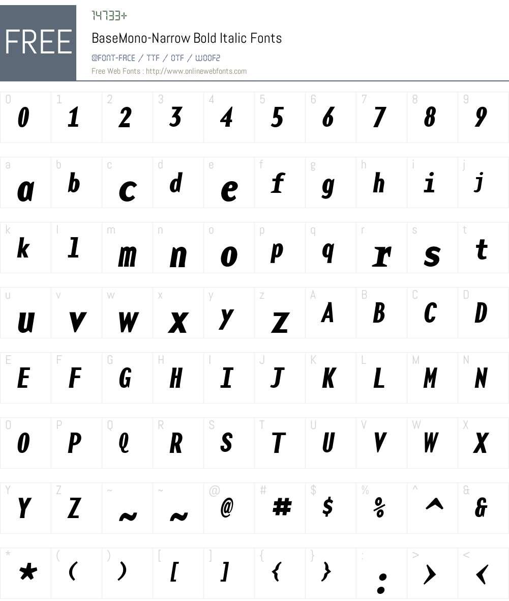 BaseMono-Narrow Font Screenshots