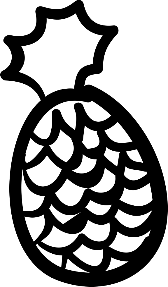 Pineapple Hand Drawn Outline