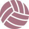 Solid Volleyball