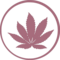 Round Canabis Plant Leaf Drug